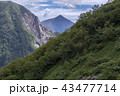 北アルプスの山々 43477714