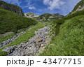 北アルプスの山々 43477715