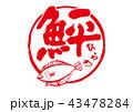 ひらめ 鮃 筆文字 43478284