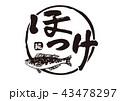 ほっけ 筆文字 文字のイラスト 43478297