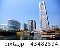 横浜 ランドマークタワー 桜 みなとみらい21 (神奈川県 横浜市) 43482594