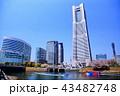 横浜 ランドマークタワー 桜 みなとみらい21 (神奈川県 横浜市) 43482748