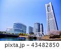 横浜 ランドマークタワー 桜 みなとみらい21 (神奈川県 横浜市) 43482850