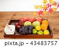 秋の果物 角盆盛り 43483757