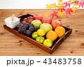 秋の果物 角盆盛り 43483758