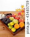 秋の果物 角盆盛り 43483759
