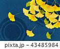 紅葉 イチョウ 秋のイラスト 43485984