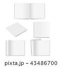 立体 3D 3Dのイラスト 43486700