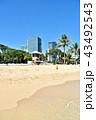 ハワイ 砂浜 リゾートの写真 43492543