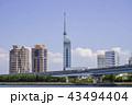 福岡タワー 福岡 晴れの写真 43494404