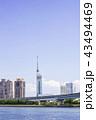 福岡タワー 福岡 晴れの写真 43494469