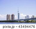福岡タワー 福岡 晴れの写真 43494476