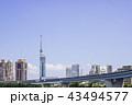 福岡タワー 福岡 晴れの写真 43494577