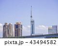福岡タワー 福岡 晴れの写真 43494582