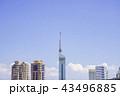 福岡タワー 福岡 晴れの写真 43496885