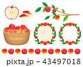 りんご 43497018