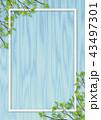 木目 青色 新緑のイラスト 43497301