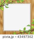 木目 新緑 フレームのイラスト 43497302