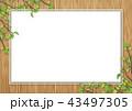 木目 新緑 フレームのイラスト 43497305