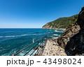 海 海岸 散歩道の写真 43498024