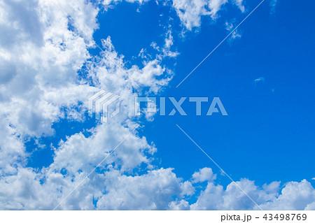 真夏の青空 43498769