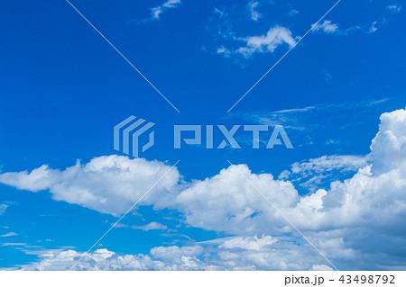 真夏の青空 43498792