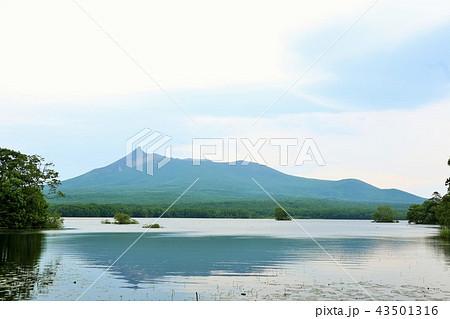 北海道 大沼公園 43501316