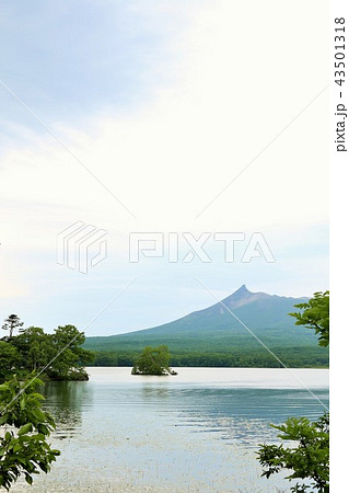 北海道 大沼公園 43501318