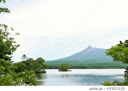 北海道 大沼公園 43501320