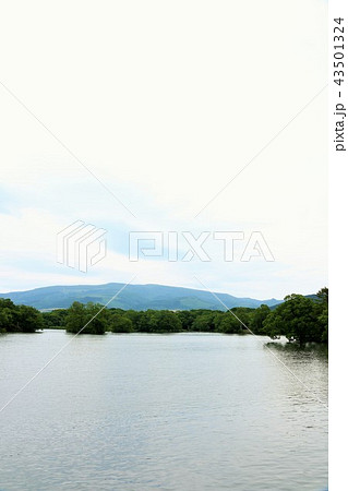 北海道 大沼公園 43501324