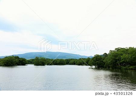 北海道 大沼公園 43501326
