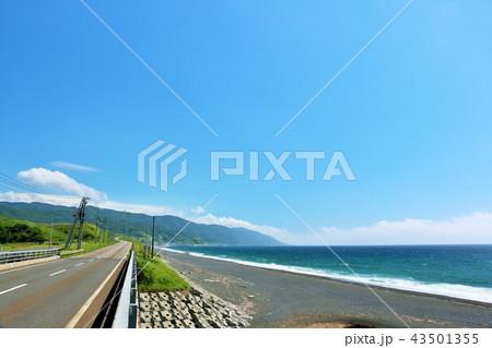 北海道 青空と海 43501355