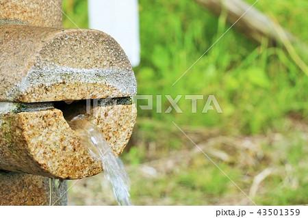 北海道 生命の泉「能登の水」 43501359