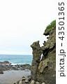 海 日本海 海岸の写真 43501365