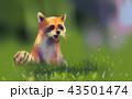 動物 あらいぐま アライグマのイラスト 43501474
