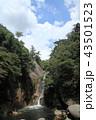 仙娥滝 昇仙峡 滝の写真 43501523