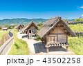 吉野ヶ里歴史公園 43502258