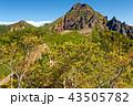 八ヶ岳 山 赤岳の写真 43505782