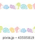 貝 貝がら 貝殻のイラスト 43505819