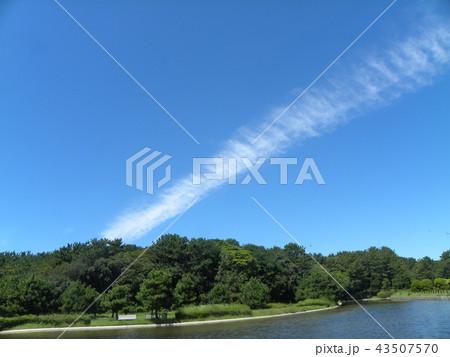 飛行機雲のような筋状の雲 43507570