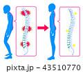 背骨 改善 矯正のイラスト 43510770