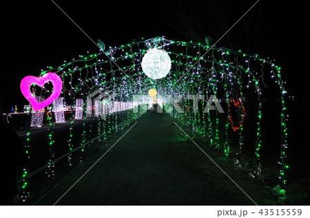 群馬県榛名湖のクリスマスイルミネーションフェスティバル、抽象的なきらきらした装飾、ピンぼけの光 43515559