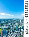 東京 都市風景 都市の写真 43515581