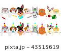 ベクター 犬 猫のイラスト 43515619