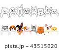 かわいい子犬と子猫たちのボーダーセット 43515620