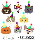 かわいい子猫たちの顔セット パーティーハット 43515622