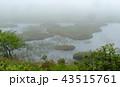 霧の湿原 43515761