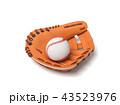 ベースボール 白球 野球のイラスト 43523976