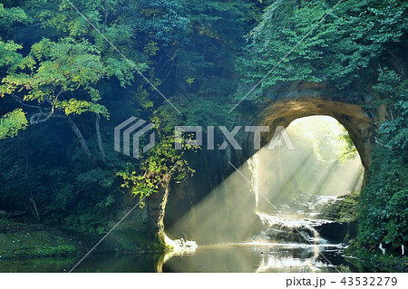 千葉県 濃溝の滝からの朝の光 43532279