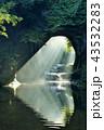 滝 濃溝の滝 川の写真 43532283